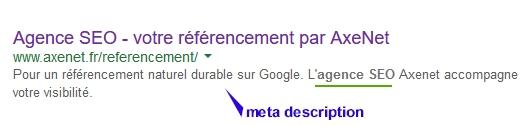 Le contenu de cette balise s'affiche sous le titre sur Google